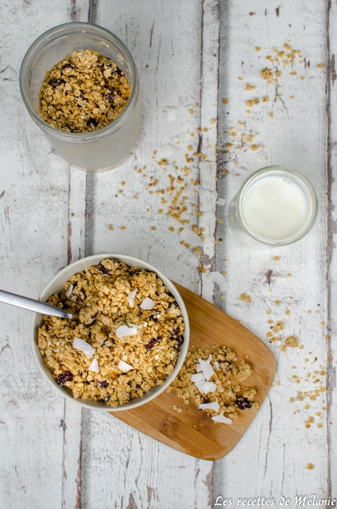 Granola maison au beurre de cacahuètes