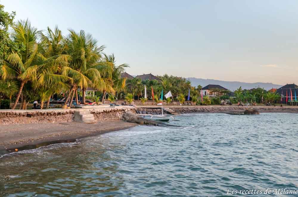 Notre séjour à Bali: de Lovina et Munduk