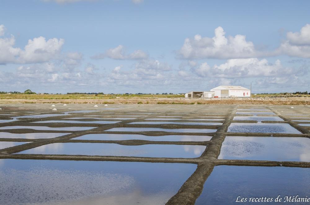 Dans les coulisses de moi chef à Noirmoutier