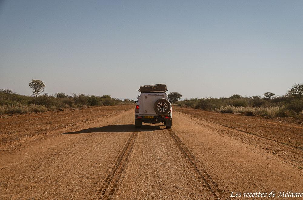 2 semaines en Namibie
