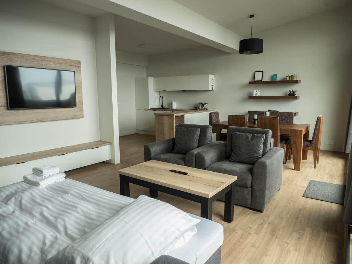 Vik apartment